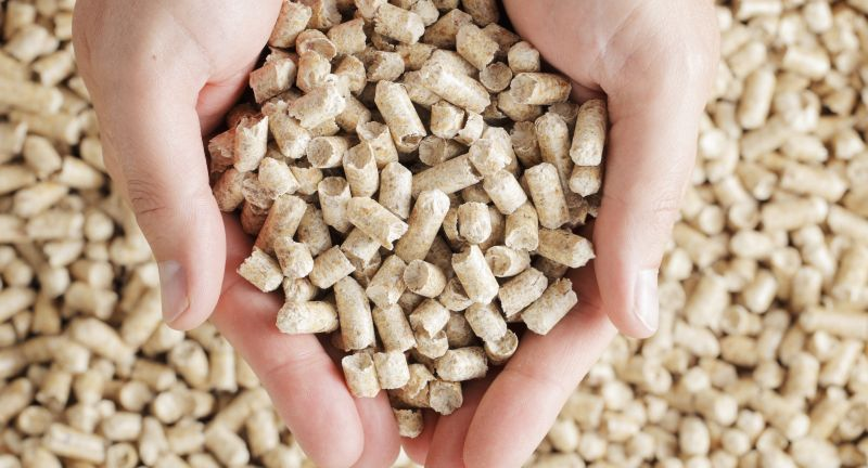 heating, fingers, finger, cupped, hands, hand, holds, holding, many, objects, object, solid, biomass, energy, natural, fuel, pellet, pellets, wood, heating, fingers, finger, cupped, hands, hand, holds, holding, many, objects, object, solid, biomass, energy, natural, fuel, pellet, pellets, wood