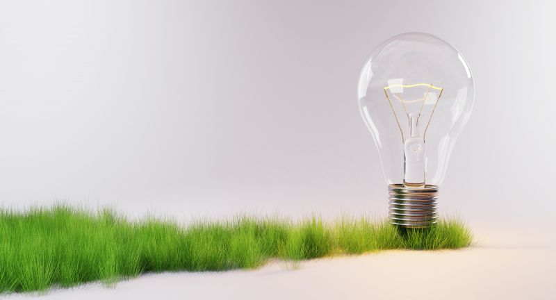 light, bulb, electricity, energy, saving, eco, friendly, nature, environment, green, energy, renewable, grass, tree, bark, rock, background, neutral, growing, plants, natural, ecological, future, concept, climate, change, grey, strip, preserve, 3D Illustration, light, bulb, electricity, energy, saving, eco, friendly, nature, environment, green, renewable, grass, tree, bark, rock, background, neutral, growing, plants, natural, ecological, future, concept, climate, change, grey, strip, preserve, 3d illustration
